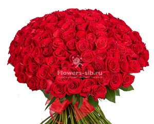 BOUQUET OF 151 ROSES